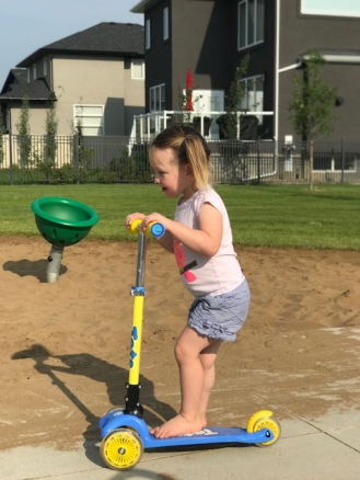 What's been happening-summer-scooter-park